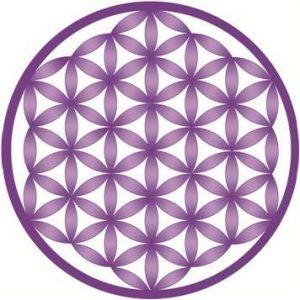 La Geometría Sagrada y el Origen de la Vida 1