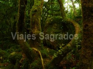 viajes_sagrados_ruta_maria_magdalena_2016_tambien_visitaremos
