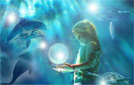 agua_delfines_energia_oceano