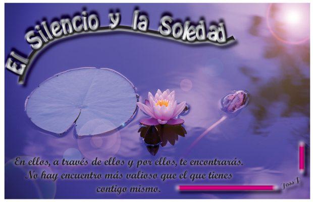 hermandadblanca_org_silencio-y-soledad