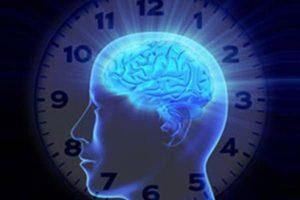 cerebro (2)
