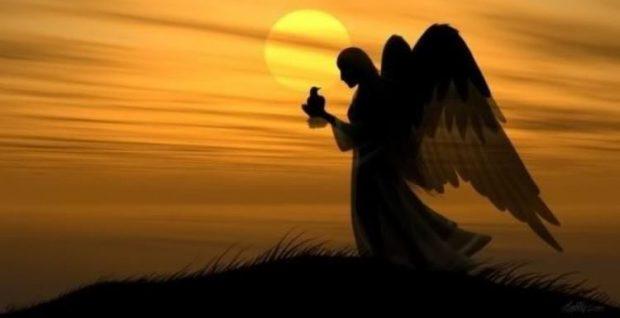 dimensión angelical- ellos nos cubren de cualquier mal