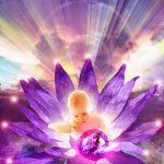 hermandadblanca org llama violeta 1 300×300.jpg - El Estado de Calma - hermandadblanca.org