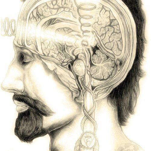 No se tiene dolor, se hace dolor. Ser o no Ser, el olvido del Sí-Mismo. 2