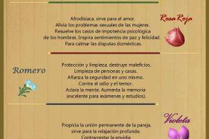 Infografía de Luz: La Magia de los Inciensos y el significado según sus Olores.