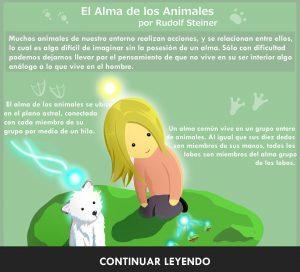 Infografía de Luz: El alma de los animales por Rudolf Steiner.