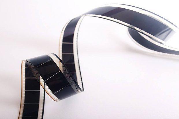 cine-gratis-musaranas-disfruta-de-las-actividades