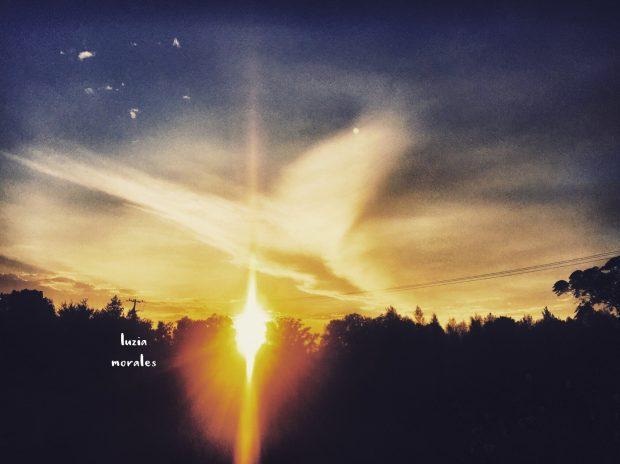 manifestacion-angel-cielo-luzia-morales