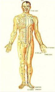 20161211 ricard251 id119087 el plano eterico y el proposito del alma acupunturaatlas - El plano Etérico y el propósito del alma - hermandadblanca.org