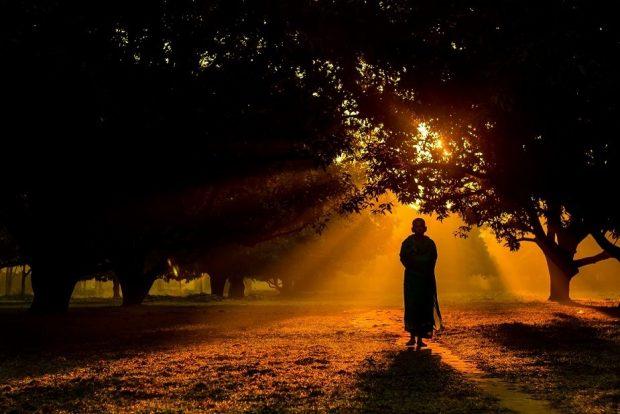 20161216 paedomabdil23593 id119392 12 ventajas de la meditacion en el plano espiritual 12 ventajas de la meditación en el plano espiritual 3 - 12 ventajas de la meditación en el plano espiritual - hermandadblanca.org