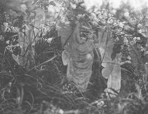 20170108 gonzevagonz23596 id120808 los seres elementales pequenos guardianes de la naturaleza fairie5 - LOS SERES ELEMENTALES: Pequeños guardianes de la Naturaleza - hermandadblanca.org