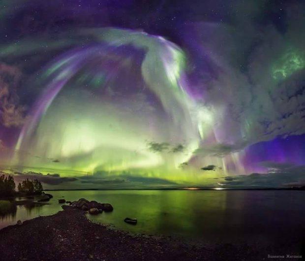 20170122 gonzevagonz23596 id121466 actualizacion sobre el proceso de ascension ángel aurora - Actualización sobre el Proceso de Ascensión - hermandadblanca.org