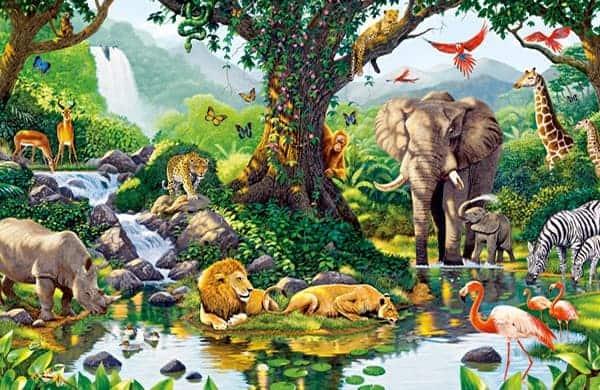 20170128 pilarmktvaz2984773 id121676 el renacimiento el karma y los reinos de existencia anim - El Renacimiento, el karma y los reinos de existencia - hermandadblanca.org