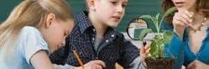 20170121 willyhern39164 id121413 pedagogia waldorf educar en las facultades del alma pedagogia 300×153.jpg - Pedagogía Waldorf: Educar en las facultades del alma - hermandadblanca.org
