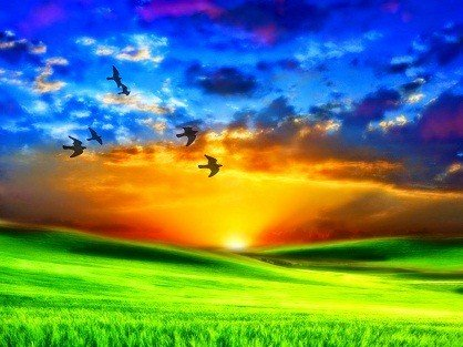 el universo y la luz divina