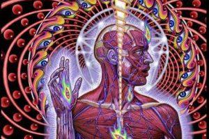 Conexión sensorial: El puente entre el mundo espiritual y el mundo material