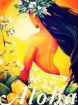 """20170220 jorge id122643 viaje espiritu de aloha a hawaii abril 2017 aloha - Viaje """"Espíritu de Aloha"""" a Hawaii Abril 2017 - hermandadblanca.org"""