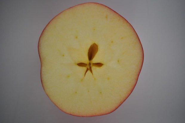 20170221 paedomabdil23593 id122726 guarda la manzana un pentagrama magico en su corazon Guarda la manzana un pentagrama mágico en su corazón - ¿Guarda la manzana un pentagrama mágico en su corazón? - hermandadblanca.org