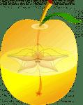 20170221 paedomabdil23593 id122726 guarda la manzana un pentagrama magico en su corazon guarda la manzana un pentagrama magico en su corazan 2 490×620.png - ¿Guarda la manzana un pentagrama mágico en su corazón? - hermandadblanca.org