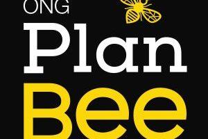 ONG Plan Bee Zona de Reserva de abejas consumida por las llamas