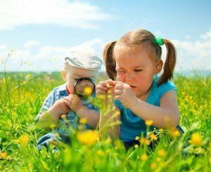 20170305 willyhern39164 id123240 los ninos deberian empezar sus procesos de aprendizaje en la naturaleza no en el aula aprender en el campo - Los Niños deberían empezar sus procesos de aprendizaje en la naturaleza, no en el aula - hermandadblanca.org