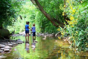 20170305 willyhern39164 id123240 los ninos deberian empezar sus procesos de aprendizaje en la naturaleza no en el aula niños aprendiendo al aire libre - Los Niños deberían empezar sus procesos de aprendizaje en la naturaleza, no en el aula - hermandadblanca.org