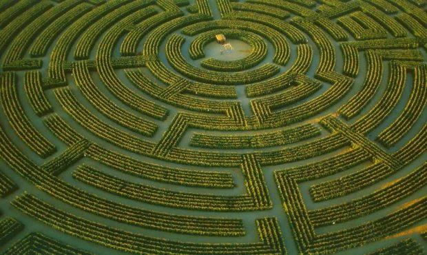 20170307 gonzevagonz23596 id123312 simbologia del laberinto el mito y la historia Laberinto - Simbología del Laberinto: el Mito y la Historia - hermandadblanca.org