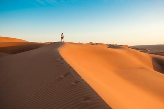 20170308 suonidiluce253 id123354 como caminar en el mundo viandante in cammino – 1 - Como caminar en el mundo - hermandadblanca.org