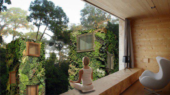 20170320 pilarmktvaz2984773 id123771 reviviendo a la casa del arbol bos4 - Reviviendo a la casa del árbol - hermandadblanca.org