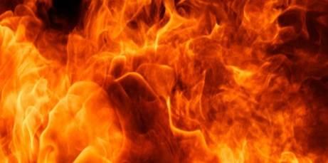 20170325 odette289135 id123974 Imagen 3 - Signos de fuego. Las diferencias de su energía creadora. - hermandadblanca.org