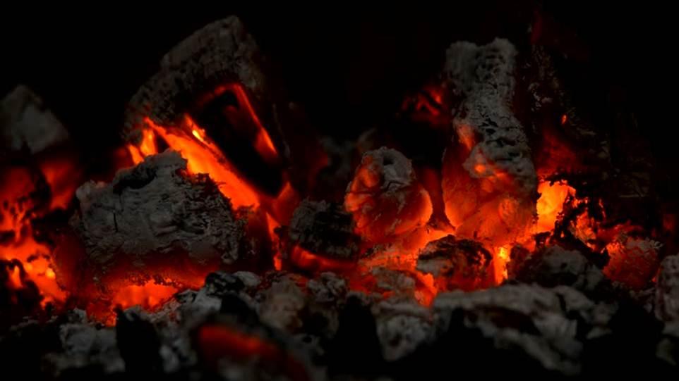 20170325 odette289135 id123974 Imagen 4 - Signos de fuego. Las diferencias de su energía creadora. - hermandadblanca.org