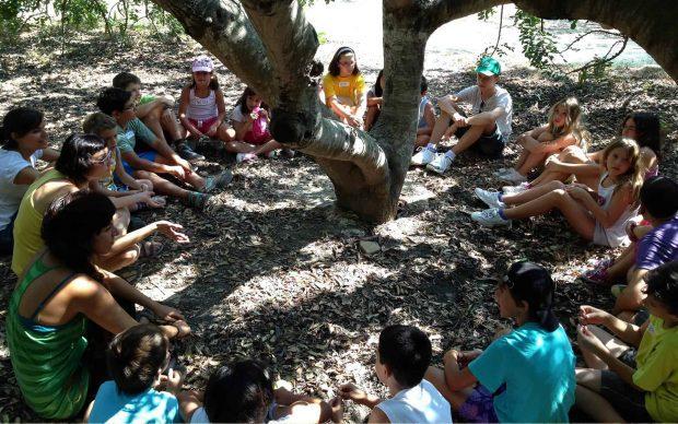 20170328 kikio327154 id124102 img1 - Las reflexiones de Kishnamurti sobre la educación como actividad religiosa (Primera parte) - hermandadblanca.org
