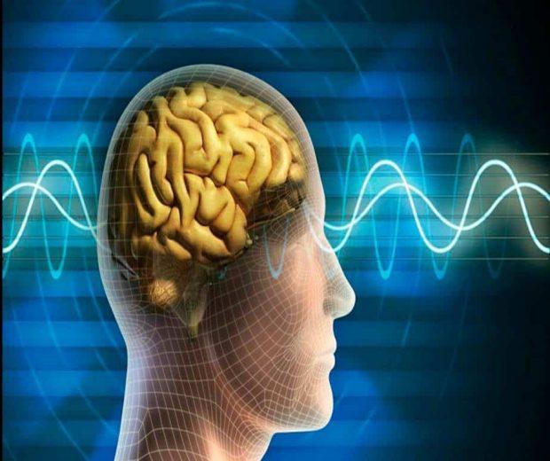 Lo que creamos o atraemos es igual a la frecuencia vibratoria de la energía que experimentamos