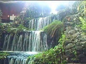 20170407 jorge id124445 thetahealing hotel beatriz lanzarote naturaleza - Vacaciones + Thetahealing del 12 al 18 de Mayo 2017 en Lanzarote - hermandadblanca.org
