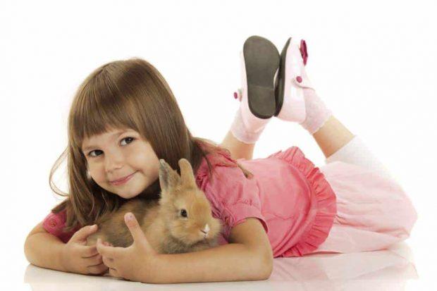 20170426 kikio327154 id125191 imagen 4 - Nuestros hijos y sus mascotas. Otorgar cuidados y amor, crea seres estables y armónicos. - hermandadblanca.org