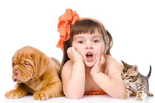 20170426 kikio327154 id125191 imagen 5 - Nuestros hijos y sus mascotas. Otorgar cuidados y amor, crea seres estables y armónicos. - hermandadblanca.org