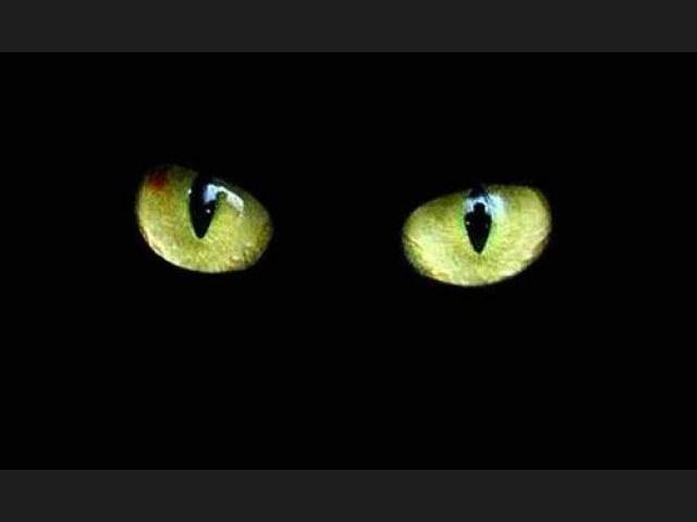 20170504 odette289135 id125526 Imagen 1 - Supersticiones. Abandona miedos y tradiciones innecesarias. - hermandadblanca.org