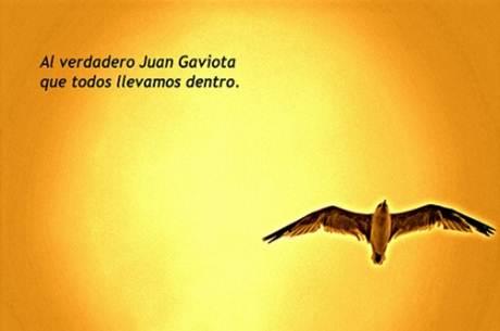 20170505 kikio327154 id125556 Imagen 3 - Juan Salvador Gaviota. Un libro que no puede faltar en tu colección. - hermandadblanca.org