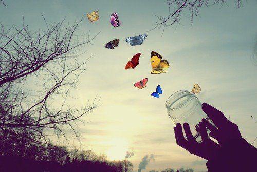 20170513 kikio327154 id125770 MARIPOSAS LIBERTAD - Libertad y educación en la perspectiva de Krishnamurti. 1° Parte: Los impedimentos de la libertad - hermandadblanca.org