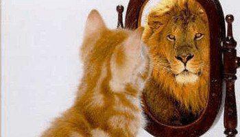 20170520 kikio327154 id125997 imagen 4 - ¿Te cuidas por autoestima y salud o por vanidad? La búsqueda del equilibrio - hermandadblanca.org