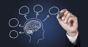 20170522 willyhern39164 id126075 Dinamismo y Emoción - ¿Qué necesita tu Cerebro para aprender? Dinamismo y Emoción - hermandadblanca.org