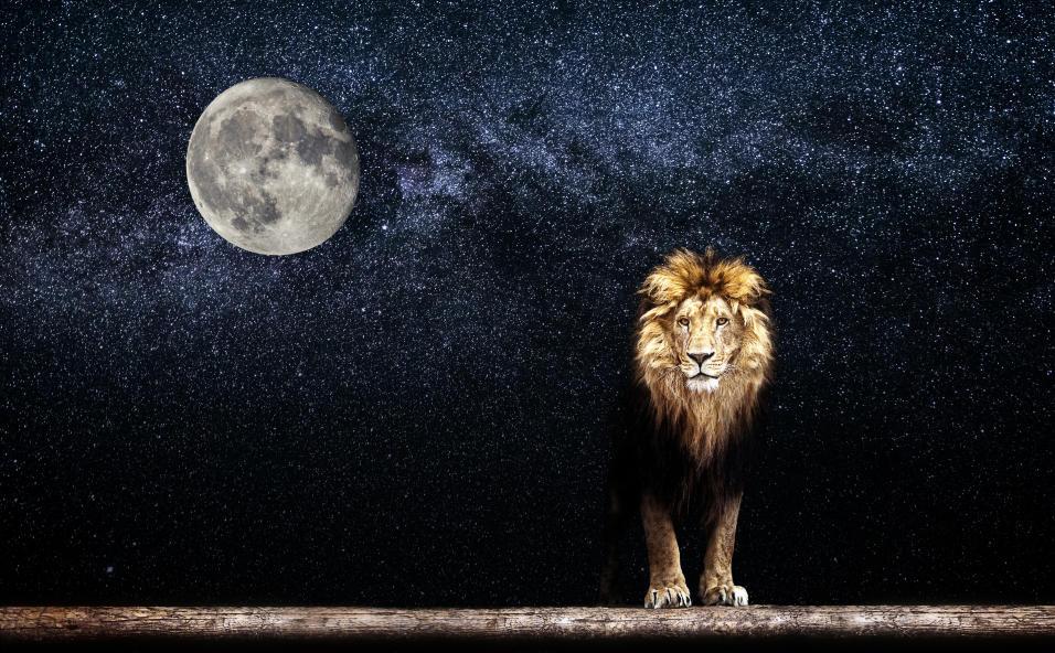 20170529 odette289135 id126406 imagen 1 - Posición de la Luna en el zodiaco - hermandadblanca.org