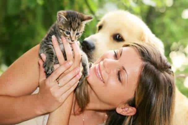 20170530 kikio327154 id126438 Imagen2 - Animales. Las valiosas lecciones que pueden enseñarnos. - hermandadblanca.org
