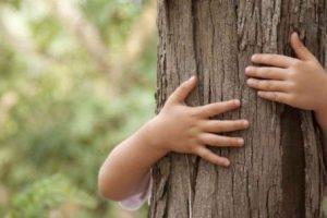 ¿Cómo crear conciencia ecológica en las personas?