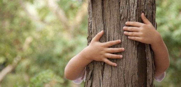 20170603 kikio327154 id126568 imagen 1 - ¿Cómo crear conciencia ecológica en las personas? - hermandadblanca.org