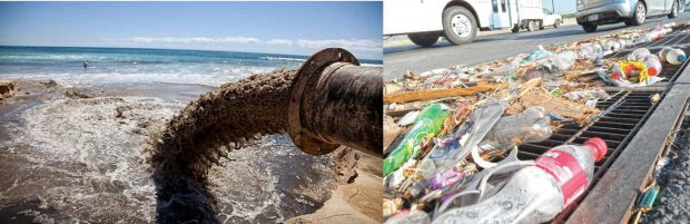 20170603 kikio327154 id126568 imagen 3 - ¿Cómo crear conciencia ecológica en las personas? - hermandadblanca.org