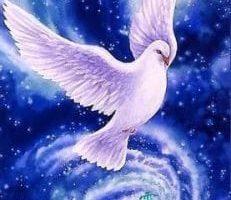 Venimos a traer Paz a tu vida.