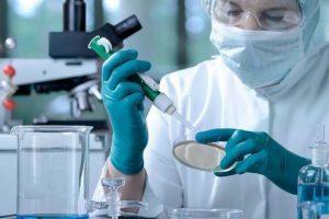 Cuídate de los fraudes. Uso de células madre en cosmetología.