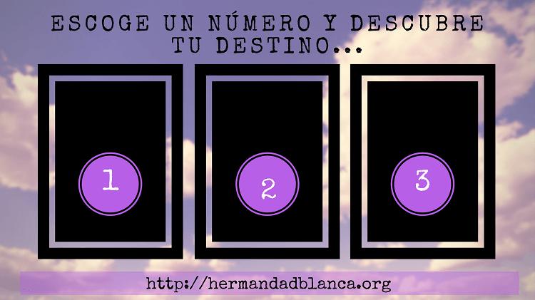 20170721 willyhern39164 id129849 escoge un número y descubre tu futuro - Borrador automático - hermandadblanca.org