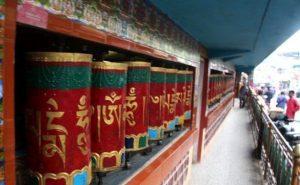 20170726 jorge id130118 dharamshala 001 - India, Nepal y Tibet Agosto 2017 - 12 Viajes, 12 Chakras/portales con Julio Alonso Martínez. - hermandadblanca.org